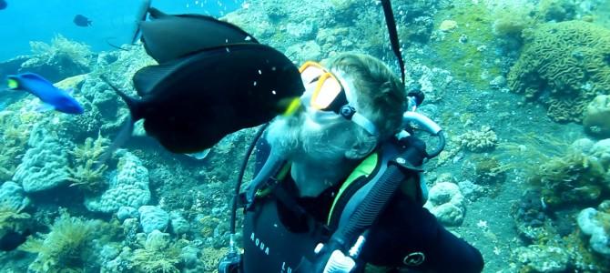 Potápění na Bali s krmením ryb v Tulambenu